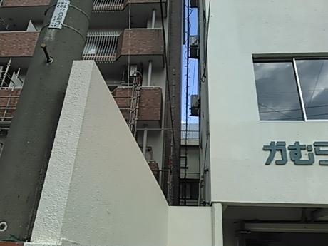 KIMG0019.jpg